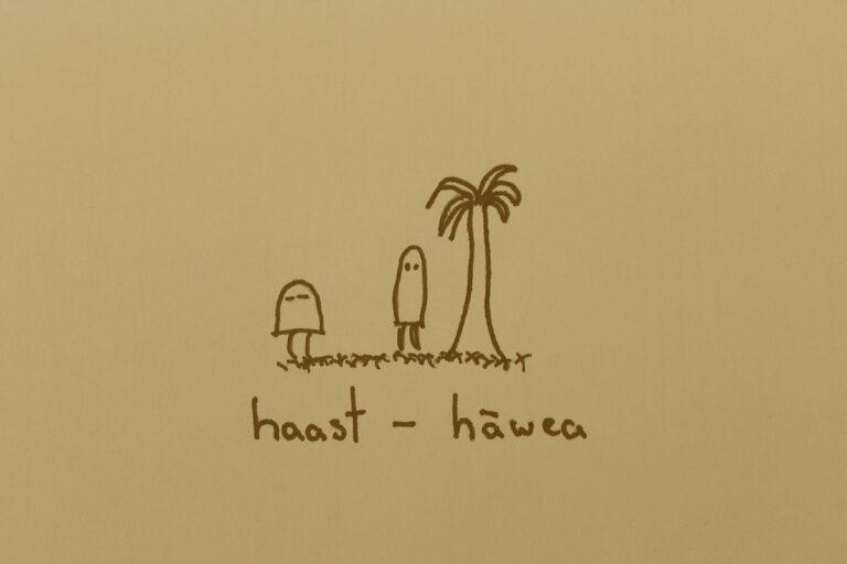 Haast – Hāwea (2019)